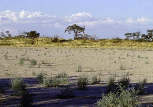 Landschaftsformen im Osten Namibias am Rande der Kalahari Wüste