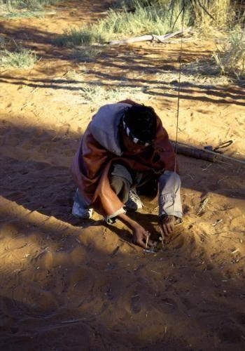 Buschmann bei der Vorbereitung einer Straußenfalle