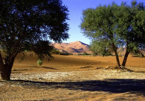 Die Namib Wüste im Naukluft Nationalpark