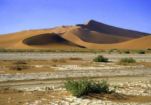 Wüstenlandschaft mit den größten Dünen der Welt im Naukluft Nationalpark