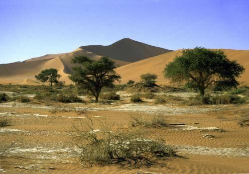 Wüstenlandschaft im Naukluft Nationalpark