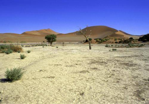 Sossusvlei im Naukluft Nationalpark