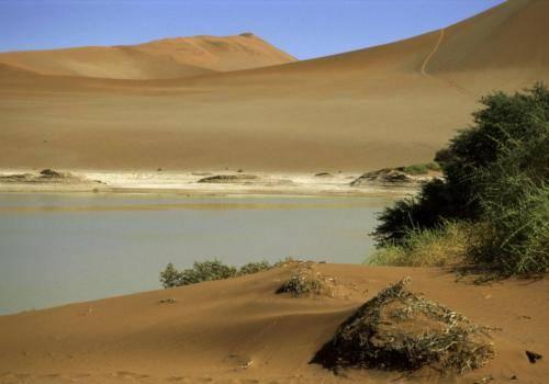 Wasser in der Wüste im Naukluft Nationalpark
