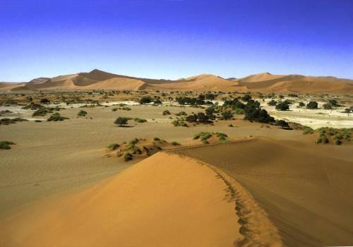 Dünenlandschaft bei Sossusvlei in der Namib Wüste