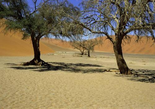 Die Namib WüsteNaukluft im Nationalpark