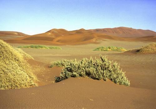 Die Namib Wüste im Naukluft Nationalpark in der Namib Wüste