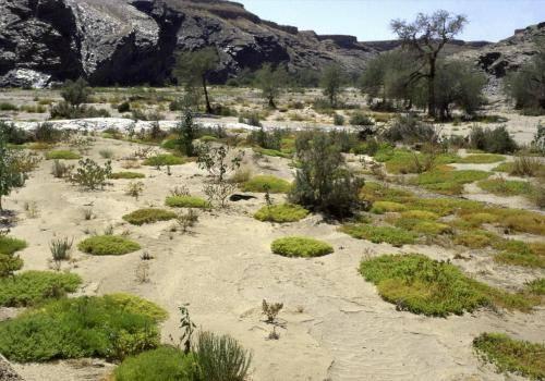 Gegend zwischen Fish River und Lüderitz