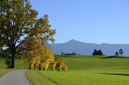 Herbstlandschaft bei Murnau; Bayern