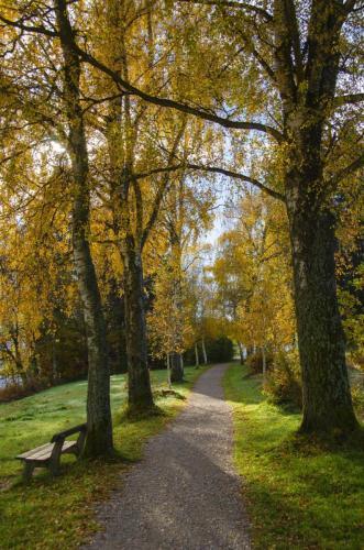 Stimmungsvolle herbstliche Wanderung am Staffelsee