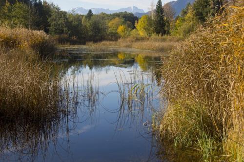 Das Murnauer Moos mit Weiherlandschaft im Vordergrund