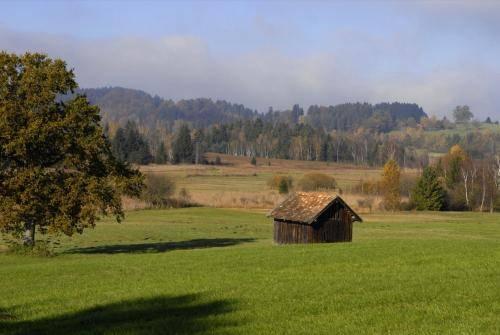 Landschaft um den Staffelsee