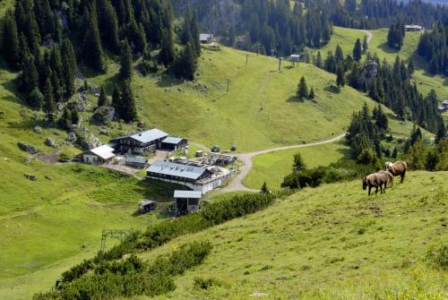 Wanderung vom Brauneck zur Benediktenwand