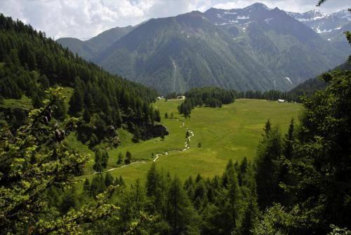 Wildbach im Val Taviela