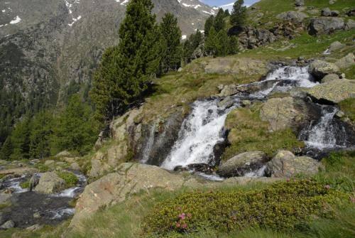 Wildbäche und Wasserfälle in traumhafter Gebirgslandschaft