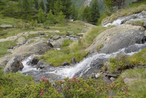 Wasserfall im Val Venezia