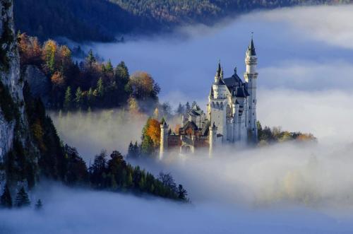 Strahlend und märchenhaft erhebt sich Schloß Neuschwanstein aus dem herbstlichen Morgennebel