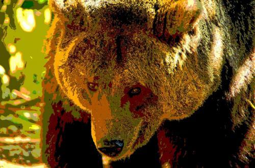 Bärenstimmung