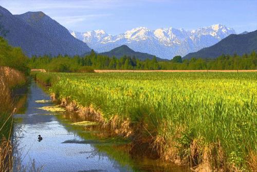 Murnauer Moos mit Bachlauf und Wettersteingebirge im Hintergrund