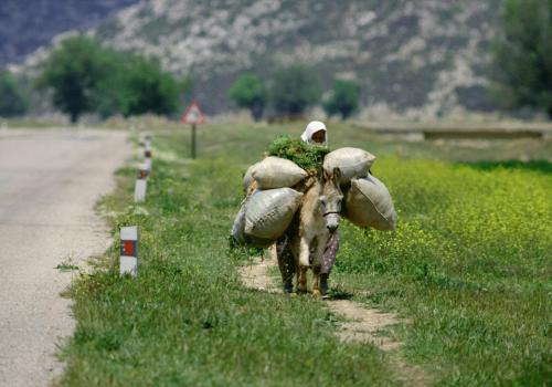 Bäuerin vollbeladen beim Heimritt mit Esel, Türkei