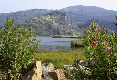 Landschaft bei Dalyan