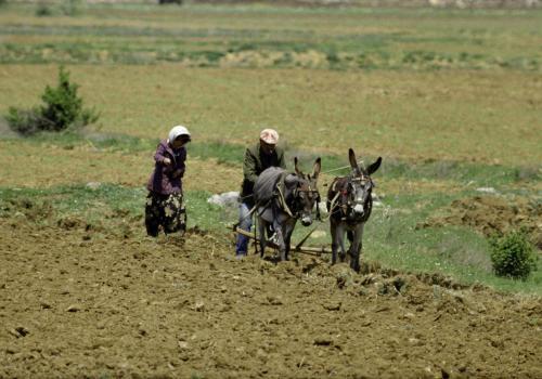 Landarbeiter bei der Feldarbeit