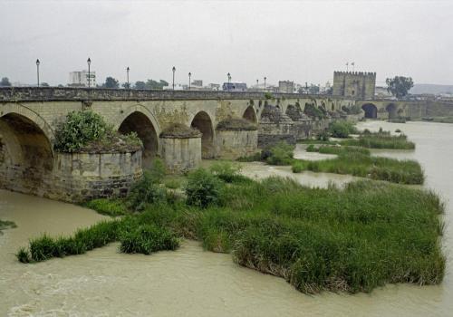 Alte Römerbrücke in Cordoba, Spanien
