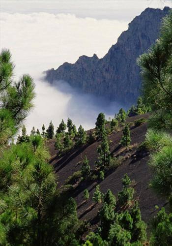 Kraterberge auf Teneriffa