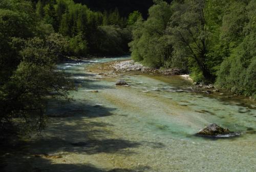 """Die """"Soca"""" Wildbach Im Norden von Slowenien"""