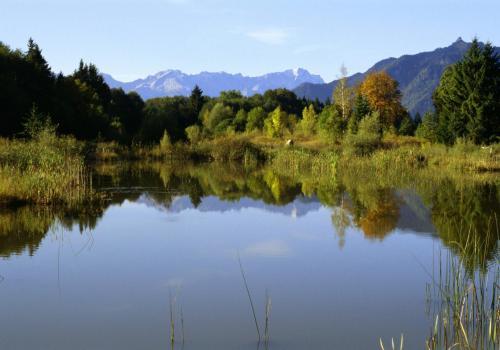 Biotopartige Weiherlandschaft im Murnauer Moos, Oberbayern