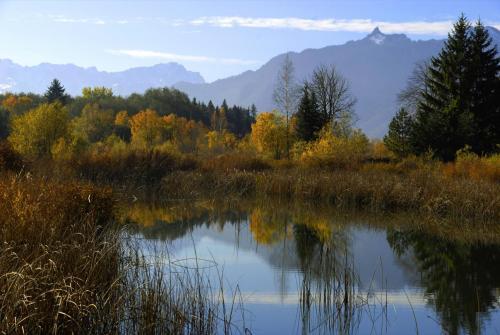 Weiherlandschaft im Murnauer Moos, Oberbayern