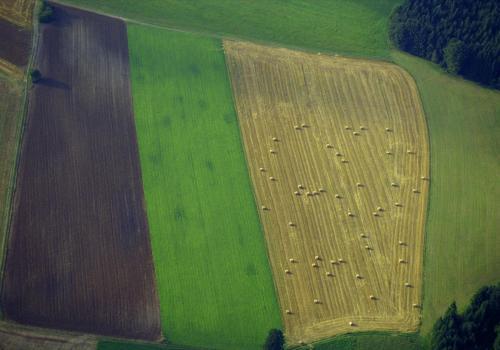 Wiesen und Felder von oben