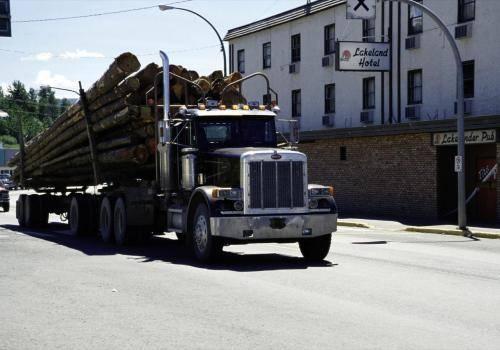 Holz-Truck beim Transport von Baumstämmen
