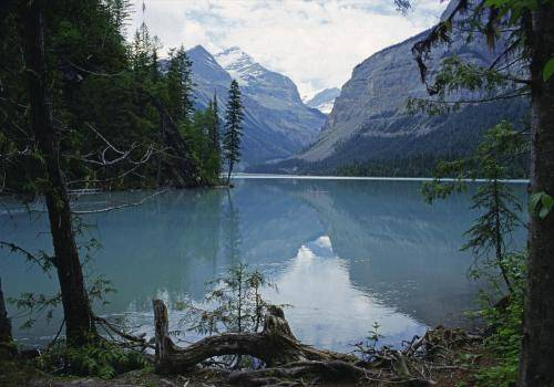 Kinbasket Lake am Anstieg zum Mount Robson