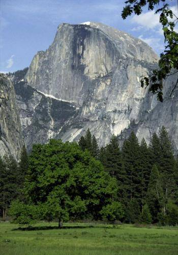 Half Dome im Yosemite Nationalpark