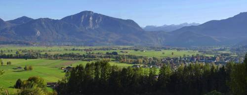 Blick in das Loisach-Kochelsee-Moor