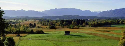 Staffelsee Moor