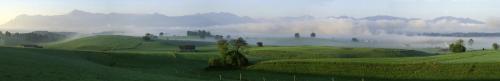 Vorgebirgslandschaft im Morgennebel bei Aidling