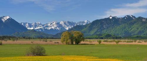 Blick in das Wettersteingebirge