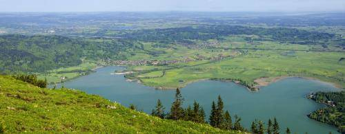 Blick vom Jochberg ins Alpenvorland