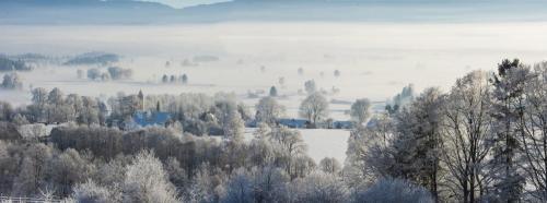 Winter im Loisach Kochelsee Moor