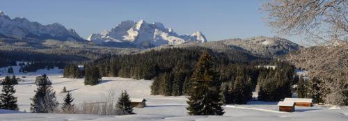 Wintermärchen Nähe Mittenwald, im Hintergrund das Wettersteingebirge