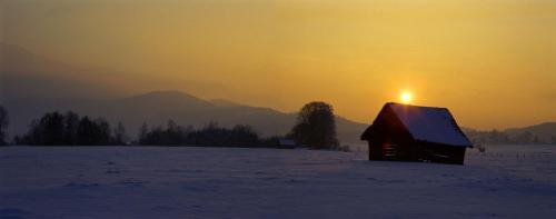 Loisach-Kochelsee-Moor im winterlichem Abendlicht