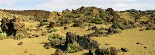 Teide Nationalpark auf Teneriffa