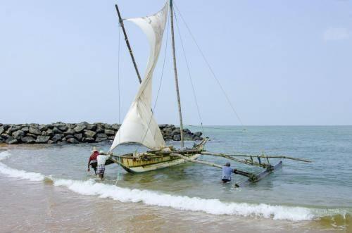 Proa-Segeln in Sri Lanka