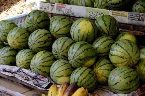 Gemüse, Gewürze; Melonen und Obst auf den Märkten in Sri Lanka