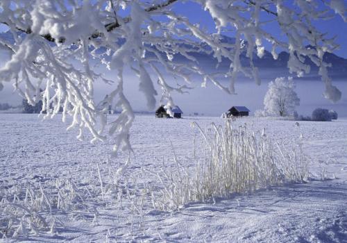Winterlandschaft mit Raureif auf den Bäumen