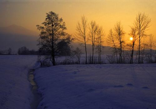 Winterabendstimmung im Loisach-Kochelsee-Moor