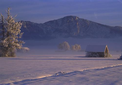 Abendstimmung im Loisach-Kochelsee-Moor an einem kalten Wintertag; Oberbayern