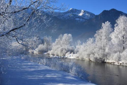 Der Loisachzufluss in den Kochelsee im Winter bei Schlehdorf,Bayern