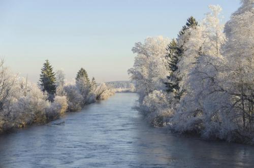 Raureif auf den Bäumen in einer winterlichen Landschaft, Bayern